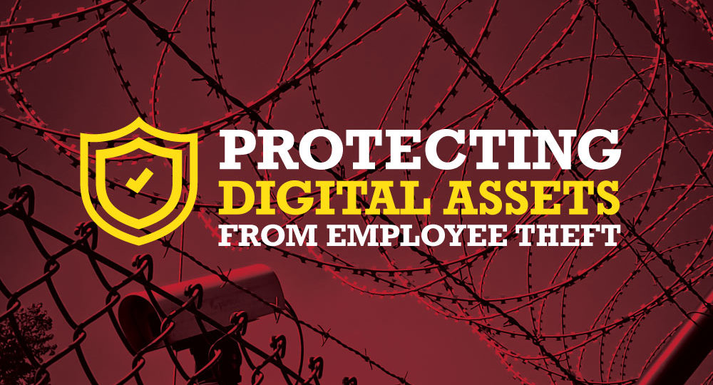 Protecting Digital Asses from Employee Theft